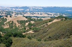 Mt. Diablo view Royalty Free Stock Photography