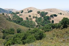 Mt. Diablo view Stock Photo