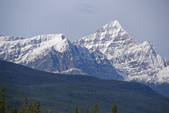 Mt Edith Cavell in the Canadian Rockies royalty free stock images