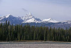 Mt Edith Cavell in the Canadian Rockies stock image