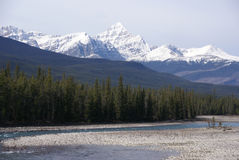 Mt Edith Cavell in the Canadian Rockies stock photography