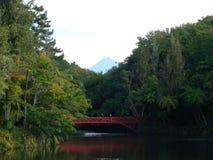 Mt Egmont Imagens de Stock