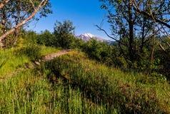 Mt El Monte Saint Helens imagenes de archivo