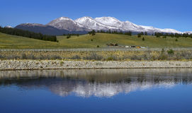 Mt Elbert peak in Colorado Royalty Free Stock Photo