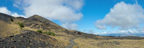 MT Etna 14 stock foto