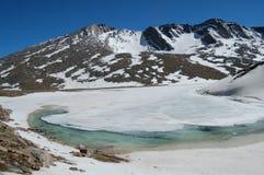 Mt. Evans Alpine Zone Royalty Free Stock Photo