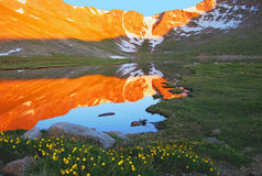 Mt. Evans Reflections. Early morning reflection in Summt Lake on Mt. Evans in Colorado Stock Image