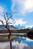 Mt Fitzroy in Argentina Stock Image