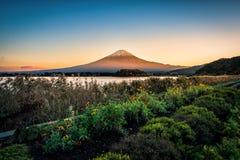 Mt Fuji über See Kawaguchiko mit Blumengarten bei Sonnenuntergang in Fujikawaguchiko, Japan stockfoto