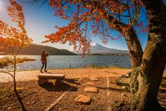 Mt Fuji über See Kawaguchiko mit Herbstlaub und Reisendfrau bei Sonnenaufgang in Fujikawaguchiko stockfotos