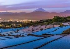 Mt fuji fotografia de stock