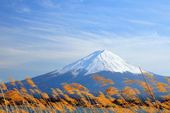Mt fuji. My fujisan on nice sky day stock images