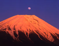 Mt fuji-197 Stock Image