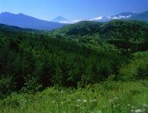 Mt fuji-310 foto de stock