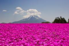 Mt Fuji Foto de archivo