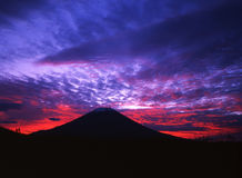 Mt fuji-316 Stock Image