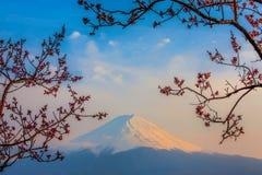MT Fuji Royalty-vrije Stock Afbeeldingen