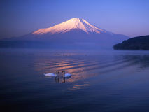 Mt fuji-401 Royalty Free Stock Photos