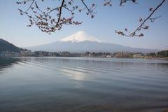 Mt Fuji Fotografie Stock