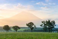 MT fuji Royalty-vrije Stock Foto's