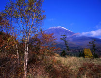 Mt fuji. The Mt,Fuji in early autumn Royalty Free Stock Images