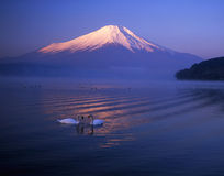 Mt fuji Royalty Free Stock Photo