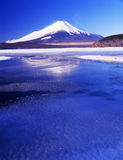 Mt fuji. The reflection of Mt,fuji on a lake Royalty Free Stock Images
