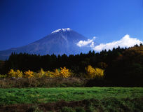 Mt fuji-462 Stock Photo