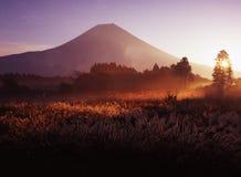Mt fuji-481. The Asagari highland morning scene Stock Image