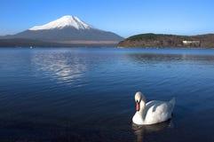 MT fuji stock afbeeldingen