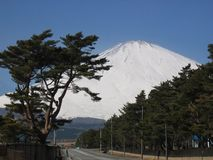 Mt. Fuji Royalty-vrije Stock Fotografie