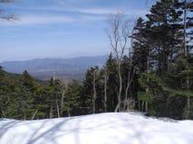 Mt fuji Fotografia Stock