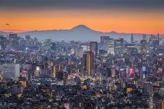 Mt fuji стоковое фото