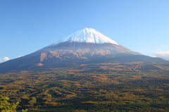 Mt. Fuji in autumn Stock Photography