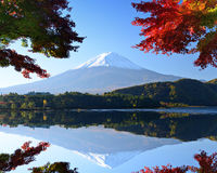 Mt. Fuji in the Autumn Royalty Free Stock Images