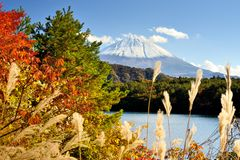 Mt. Fuji in the Autumn Royalty Free Stock Photography