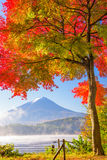 Mt. Fuji in Autumn Royalty Free Stock Images