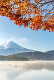 Mt. Fuji in autumn Japan Royalty Free Stock Photo
