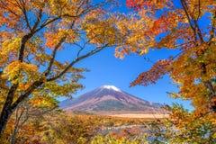 Mt. Fuji in Autumn Stock Images