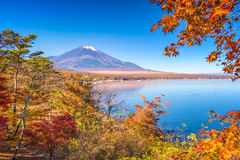 Mt. Fuji Autumn Royalty Free Stock Images