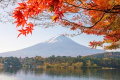 Mt. Fuji in autumn with red maple leaves. At Kawaguchigo lake Japan stock photography