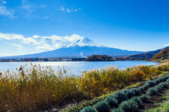 Mt. Fuji during autumn Royalty Free Stock Photography