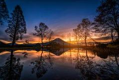 Mt. Fuji with big trees and lake at sunrise in Fujinomiya royalty free stock images