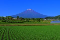 Mt.Fuji of blue sky from Fujiyoshida City Japan stock images