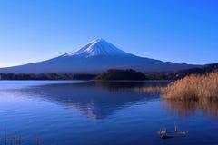 Mt.Fuji with blue sky from Oishi Park in Lake Kawaguchi Japan royalty free stock image
