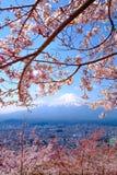 Mt Fuji and Cherry Blossom  in Japan Spring Season (Japanese Cal. L Sakura ) Selective Focus Royalty Free Stock Photography