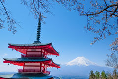 Mt Fuji and Cherry Blossom  in Japan Spring Season Japanese Cal. Mt Fuji and Cherry Blossom in Japan Spring Season Japanese Call Sakura Selective Focus Royalty Free Stock Photo