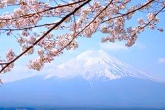 Mt Fuji and Cherry Blossom  in Japan Spring Season. (Japanese Call Sakura ) Selective Focus Stock Photography