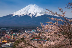 Mt Fuji and Cherry Blossom Stock Photo