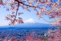 Mt. Fuji With Cherry Blossom (Sakura )in Spring, Fujiyoshida, Ja. Pan Royalty Free Stock Image